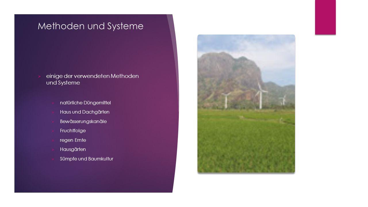 Methoden und Systeme  einige der verwendeten Methoden und Systeme  natürliche Düngemittel  Haus und Dachgärten  Bewässerungskanäle  Fruchtfolge  regen Ernte  Hausgärten  Sümpfe und Baumkultur