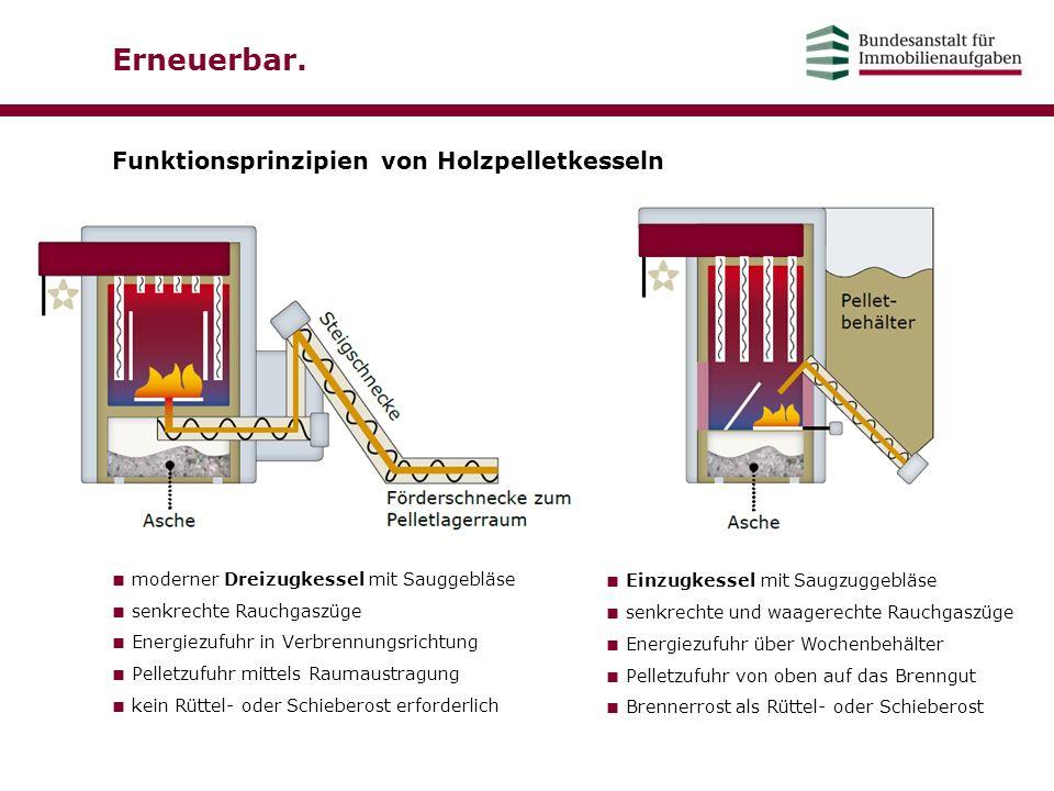 Erneuerbar. Funktionsprinzipien von Holzpelletkesseln ■ moderner Dreizugkessel mit Sauggebläse ■ senkrechte Rauchgaszüge ■ Energiezufuhr in Verbrennun