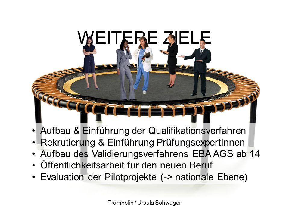 WEITERE ZIELE Trampolin / Ursula Schwager Aufbau & Einführung der Qualifikationsverfahren Rekrutierung & Einführung PrüfungsexpertInnen Aufbau des Validierungsverfahrens EBA AGS ab 14 Öffentlichkeitsarbeit für den neuen Beruf Evaluation der Pilotprojekte (-> nationale Ebene)