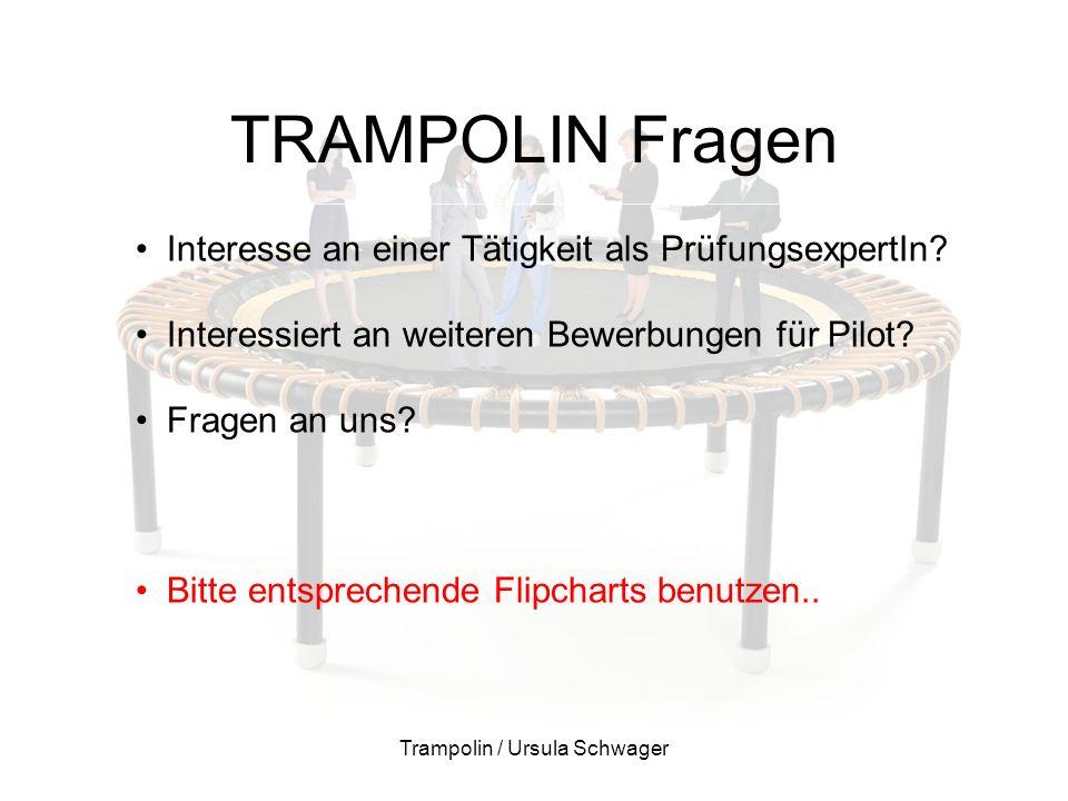 Trampolin / Ursula Schwager TRAMPOLIN Fragen Interesse an einer Tätigkeit als PrüfungsexpertIn? Interessiert an weiteren Bewerbungen für Pilot? Fragen