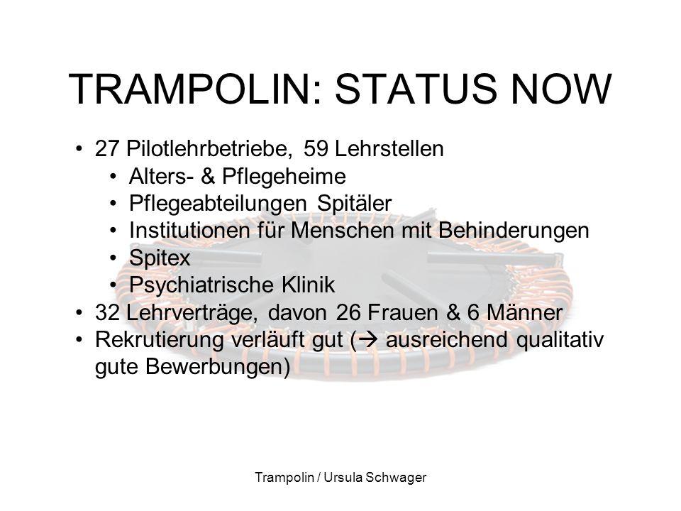 TRAMPOLIN: STATUS NOW Trampolin / Ursula Schwager 27 Pilotlehrbetriebe, 59 Lehrstellen Alters- & Pflegeheime Pflegeabteilungen Spitäler Institutionen