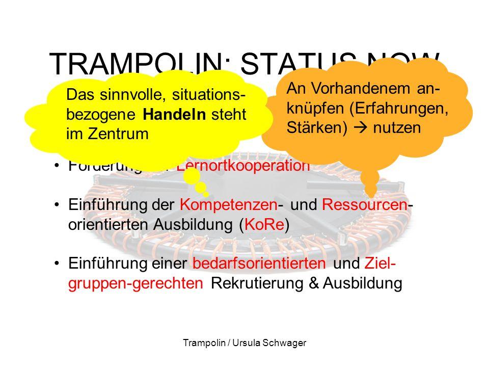 TRAMPOLIN: STATUS NOW Trampolin / Ursula Schwager Zentrale aktuelle Themen Aufbau von AGS-Strukturen an den 3 Lernorten Förderung der Lernortkooperati
