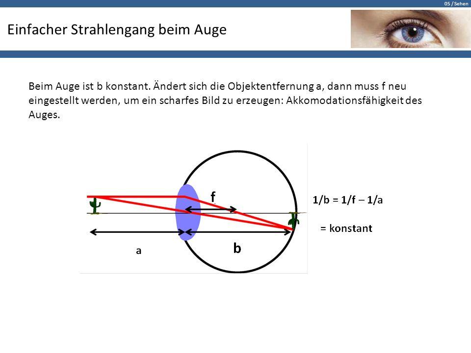05 / Sehen Einfacher Strahlengang beim Auge Beim Auge ist b konstant. Ändert sich die Objektentfernung a, dann muss f neu eingestellt werden, um ein s