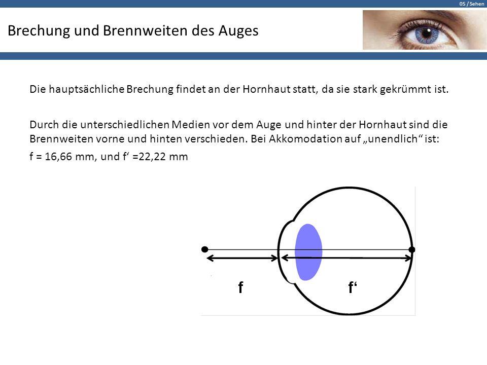 05 / Sehen Brechung und Brennweiten des Auges Die hauptsächliche Brechung findet an der Hornhaut statt, da sie stark gekrümmt ist. Durch die unterschi