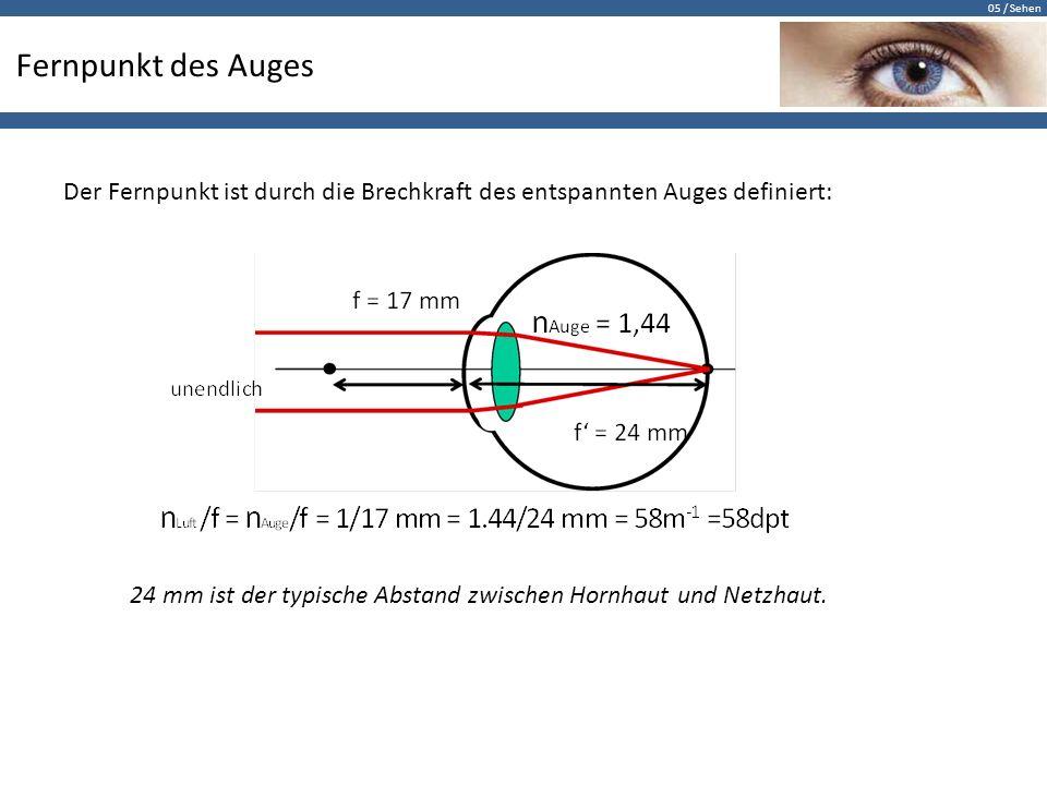 05 / Sehen Fernpunkt des Auges Der Fernpunkt ist durch die Brechkraft des entspannten Auges definiert: 24 mm ist der typische Abstand zwischen Hornhau