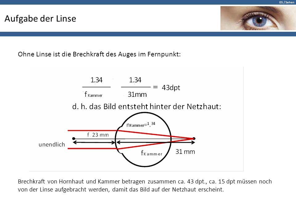 05 / Sehen Aufgabe der Linse Ohne Linse ist die Brechkraft des Auges im Fernpunkt: Brechkraft von Hornhaut und Kammer betragen zusammen ca. 43 dpt., c