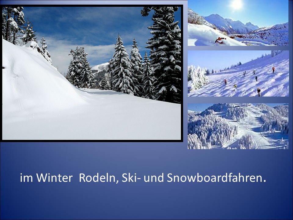 im Winter Rodeln, Ski- und Snowboardfahren.