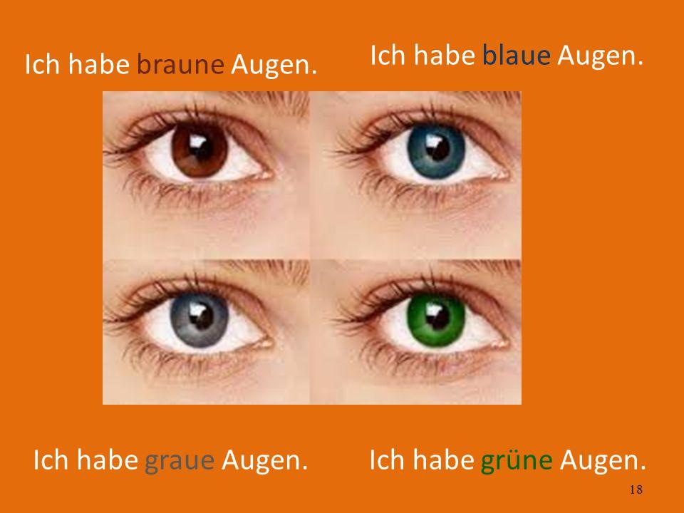 18 Ich habe braune Augen. Ich habe blaue Augen. Ich habe grüne Augen.Ich habe graue Augen.