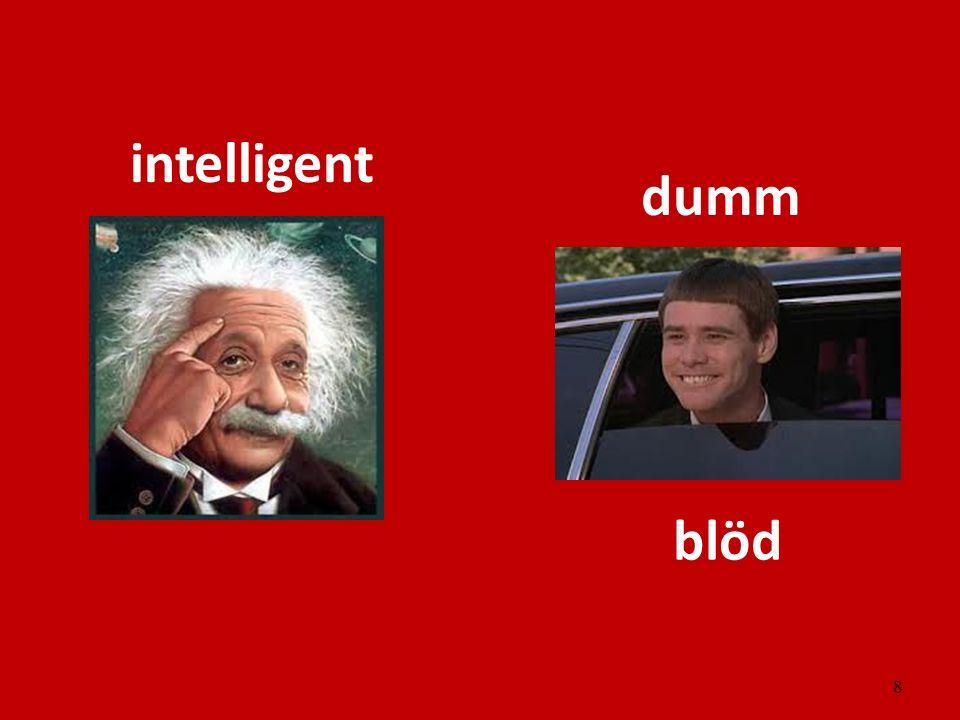 8 intelligent dumm blöd