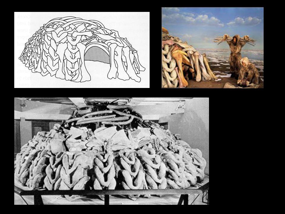 Die Bedeutung der Höhlenmalereien Die ersten Gemälde entstanden etwa vor 15 000 Jahren Ur-Bilder von: Bison, Hirsch, Pferd, Kühen, Mammuts und Wildschweinen sind die Hauptmotive.