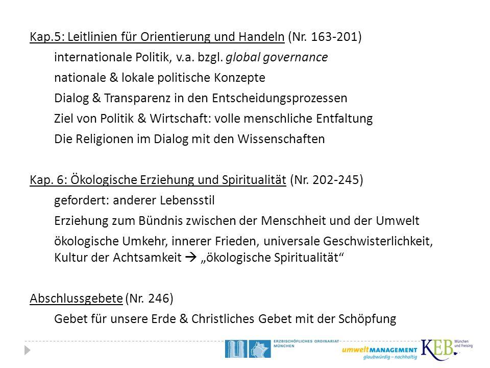 Kap.5: Leitlinien für Orientierung und Handeln (Nr. 163-201) internationale Politik, v.a. bzgl. global governance nationale & lokale politische Konzep