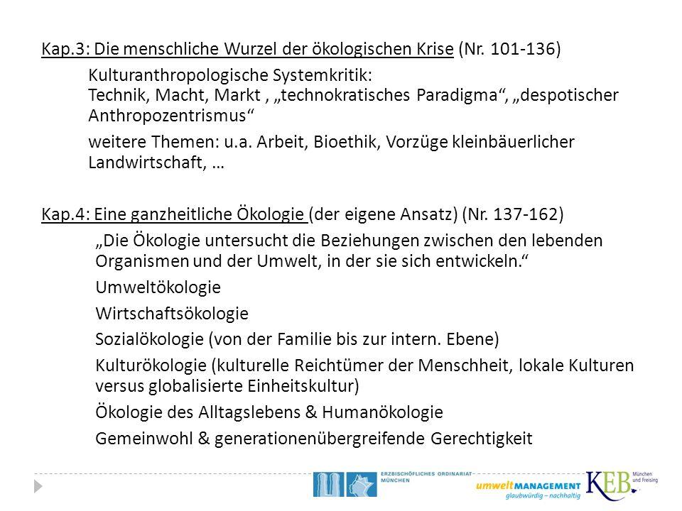 """Kap.3: Die menschliche Wurzel der ökologischen Krise (Nr. 101-136) Kulturanthropologische Systemkritik: Technik, Macht, Markt, """"technokratisches Parad"""