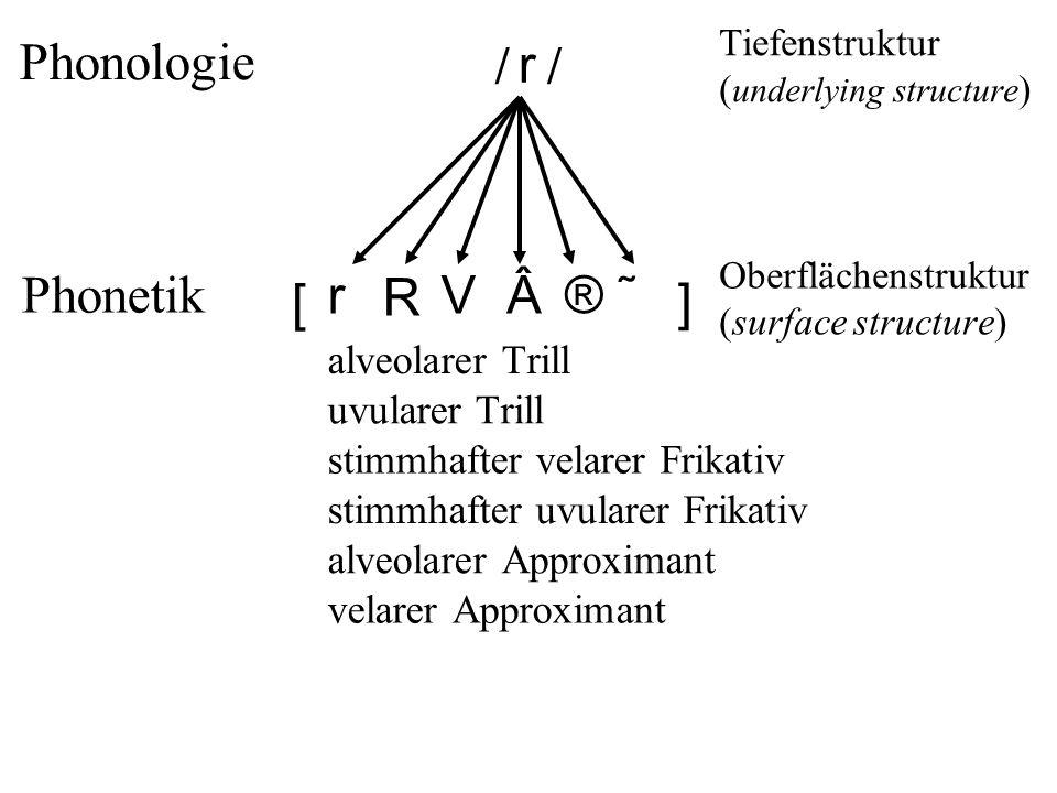 r r R V®˜ // Phonologie Phonetik Tiefenstruktur ( underlying structure ) Oberflächenstruktur (surface structure) alveolarer Trill uvularer Trill stimmhafter velarer Frikativ stimmhafter uvularer Frikativ alveolarer Approximant velarer Approximant [ ]