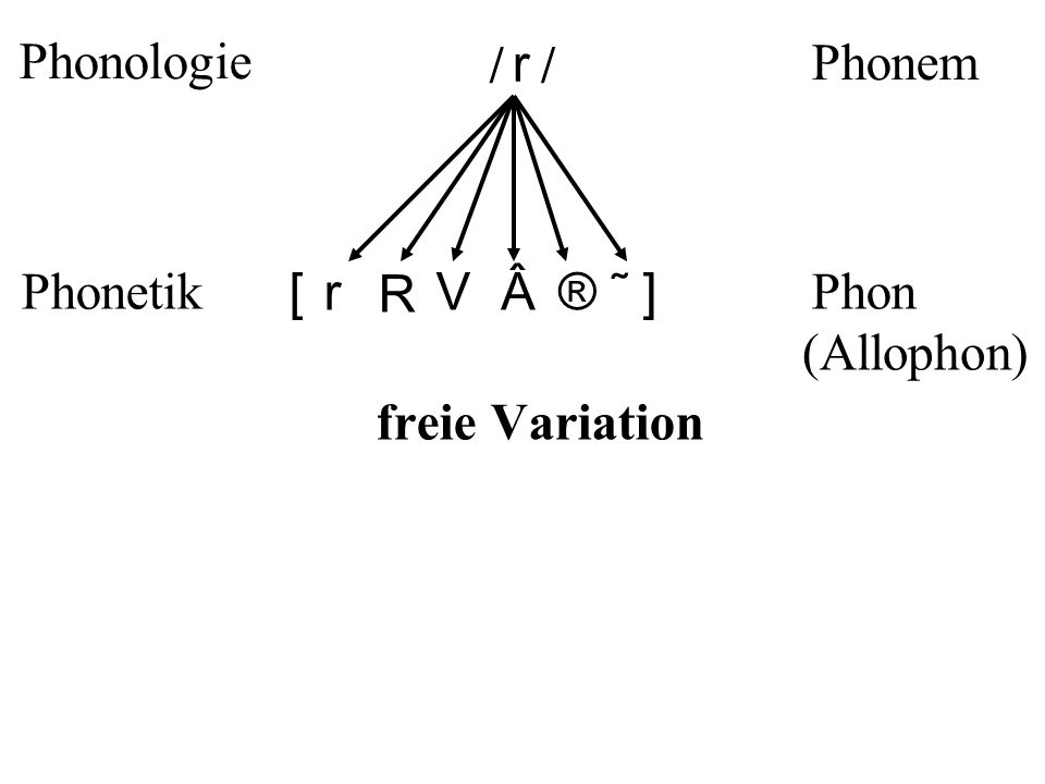 r [] r R V®˜ ] // Phonologie Phonetik Phonem Phon freie Variation (Allophon)