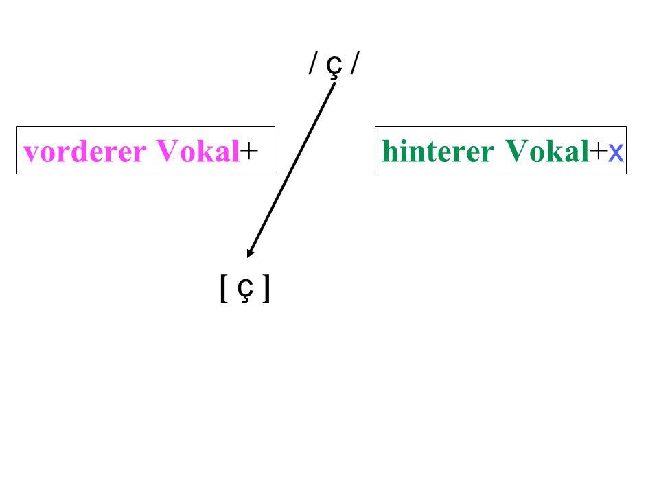 [ usteD ] [ liBertaD ] [ goBernar ] [ ambos ] [loBo][loBo] [daDo][daDo] [ falda ] [ dormiDo ] [miVa][miVa] [boVa][boVa] [ gato ] [aVo][aVo] [kuBo][kuBo] [ donde ] [boDa][boDa] Komplementäre Distribution .