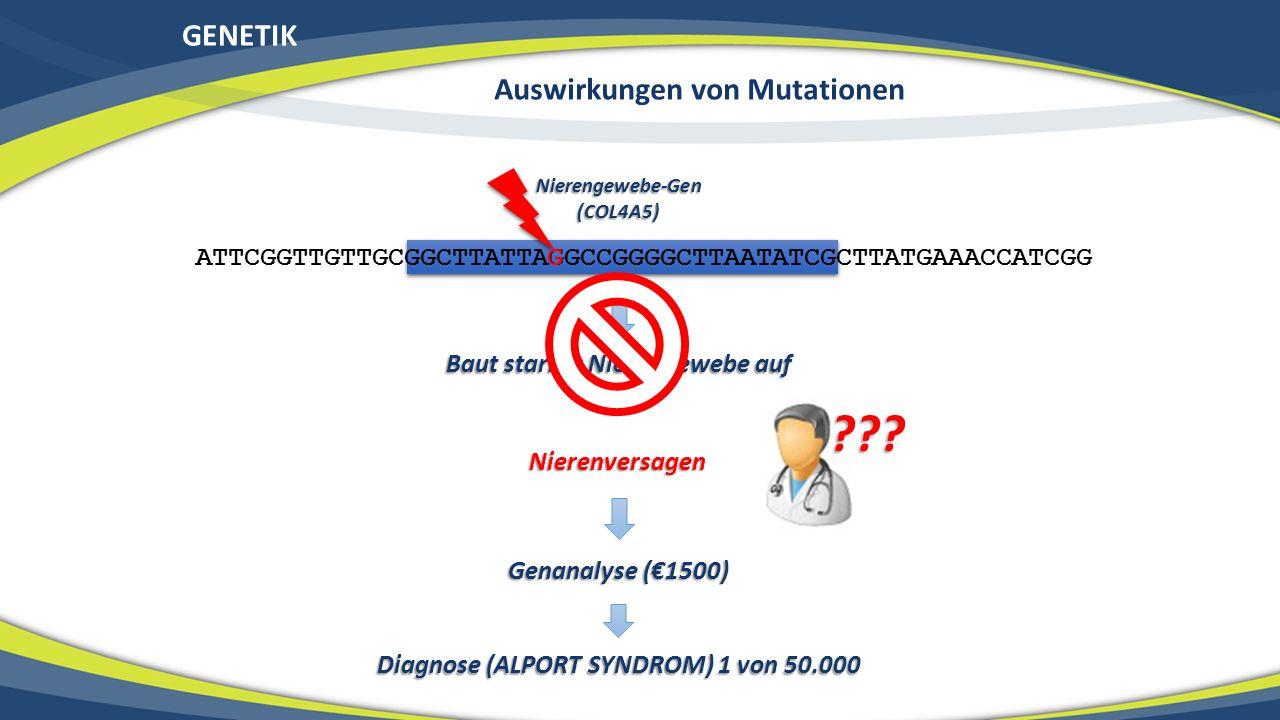 GENETIK ATTCGGTTGTTGCGGCTTATTAGGCCGGGGCTTAATATCGCTTATGAAACCATCGG Nierengewebe-Gen(COL4A5) Baut starkes Nierengewebe auf G Nierenversagen ??? Genanalys