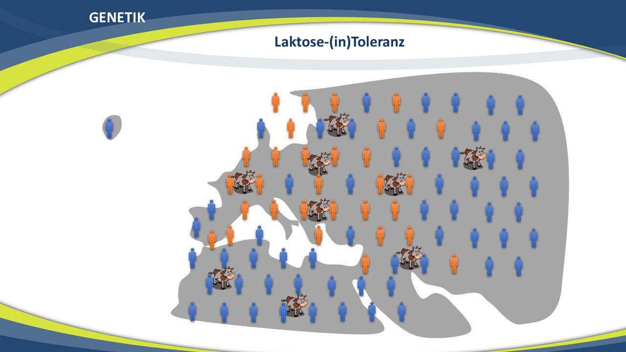 GENETIK Laktose-(in)Toleranz