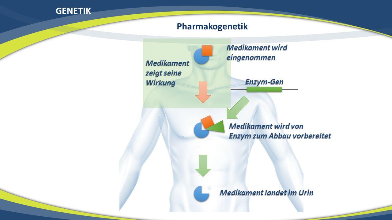 GENETIK Medikament wird eingenommen Medikament wird von Enzym zum Abbau vorbereitet Medikament landet im Urin Enzym-Gen Medikament zeigt seine Wirkung