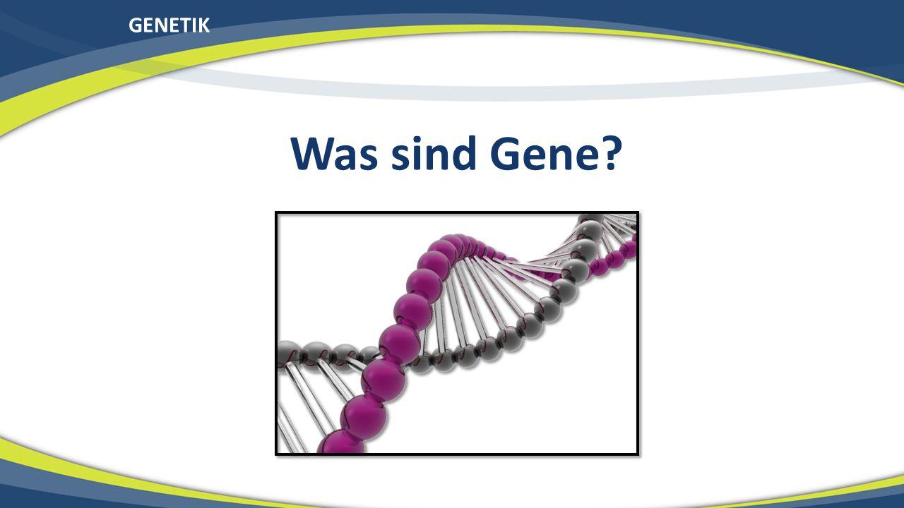 GENETIK Was sind Gene?