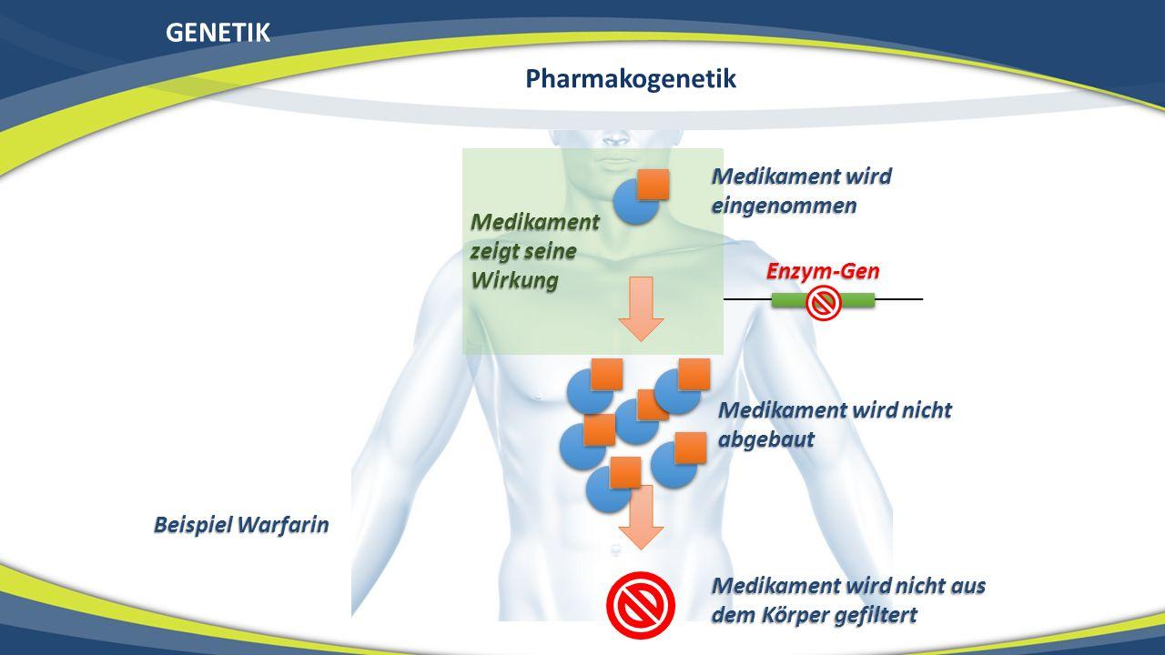 GENETIK Medikament wird eingenommen Medikament wird nicht abgebaut Enzym-Gen Medikament zeigt seine Wirkung Medikament wird nicht aus dem Körper gefil