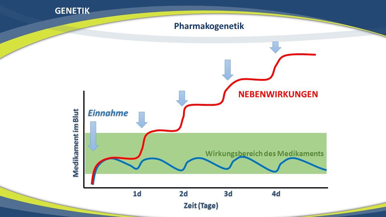 GENETIK Wirkungsbereich des Medikaments Medikament im Blut Zeit (Tage) 1d 2d 3d 4d Einnahme NEBENWIRKUNGEN Pharmakogenetik