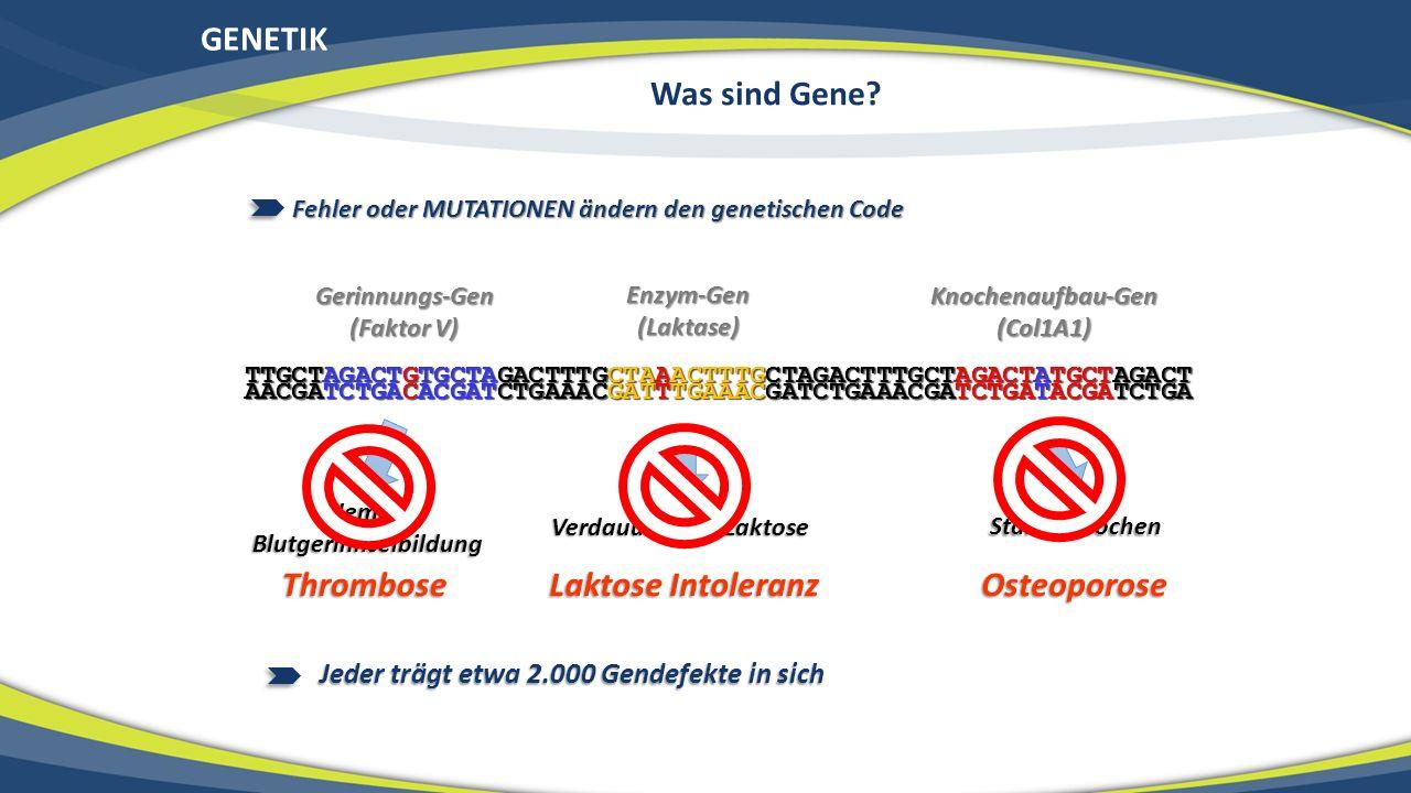 GENETIK Was sind Gene? Starke Knochen Verdauung von Laktose Hemmt Blutgerinnselbildung Fehler oder MUTATIONEN ändern den genetischen Code Jeder trägt