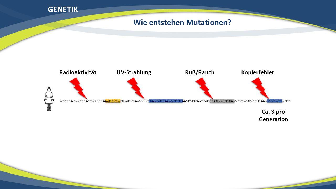 GENETIK Wie entstehen Mutationen? ATTAGGGTGGTACCGTTGCCGGGGGCTTAATATCGCTTATGAAACCATCGGTCTCGGGAATTCTCGGATATTAGGTTCTTCGGCGCGCTTCGGATAATATCATCTTCGGGAAAATA