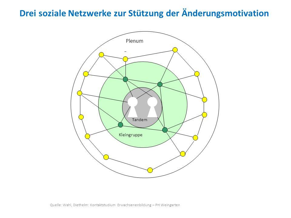 Drei soziale Netzwerke zur Stützung der Änderungsmotivation Quelle: Wahl, Diethelm: Kontaktstudium Erwachsenenbildung – PH Weingarten Plenum Tandem Kl