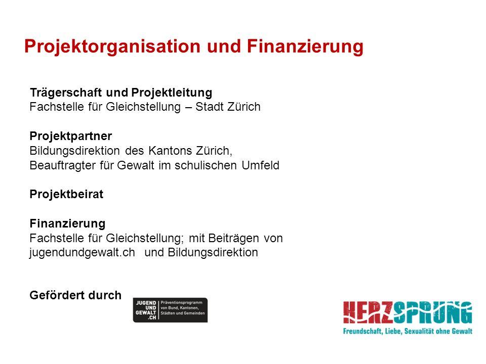 Projektorganisation und Finanzierung Trägerschaft und Projektleitung Fachstelle für Gleichstellung – Stadt Zürich Projektpartner Bildungsdirektion des