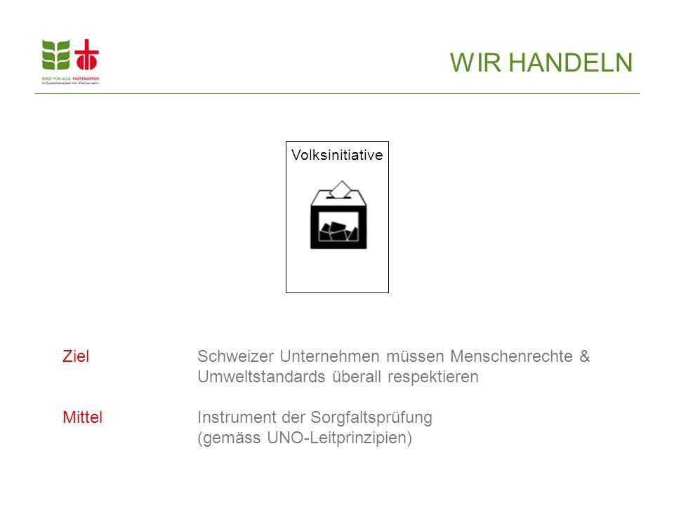 Volksinitiative ZielSchweizer Unternehmen müssen Menschenrechte & Umweltstandards überall respektieren MittelInstrument der Sorgfaltsprüfung (gemäss UNO-Leitprinzipien) WIR HANDELN
