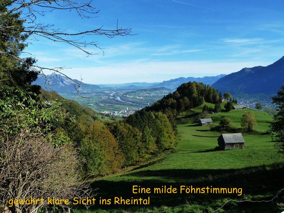 Eine milde Föhnstimmung gewährt klare Sicht ins Rheintal