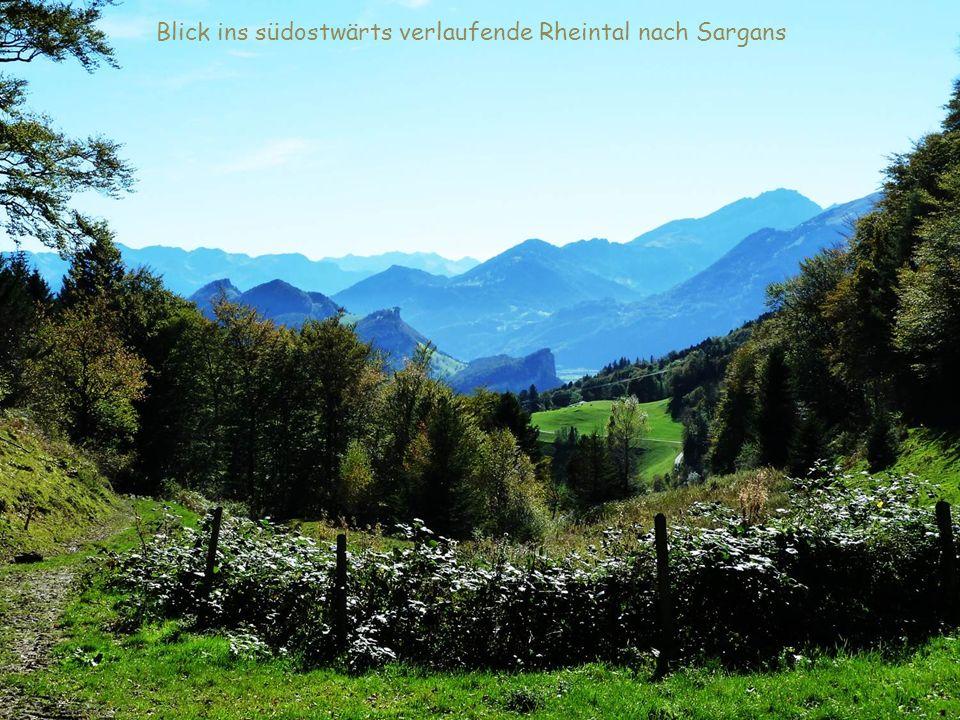 Blick ins südostwärts verlaufende Rheintal nach Sargans