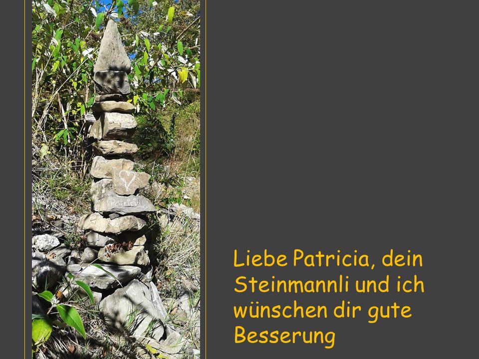 Liebe Patricia, dein Steinmannli und ich wünschen dir gute Besserung