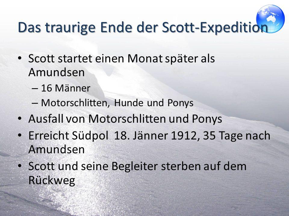 Das traurige Ende der Scott-Expedition Scott startet einen Monat später als Amundsen – 16 Männer – Motorschlitten, Hunde und Ponys Ausfall von Motorsc