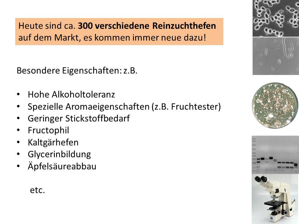 Besondere Eigenschaften: z.B. Hohe Alkoholtoleranz Spezielle Aromaeigenschaften (z.B.