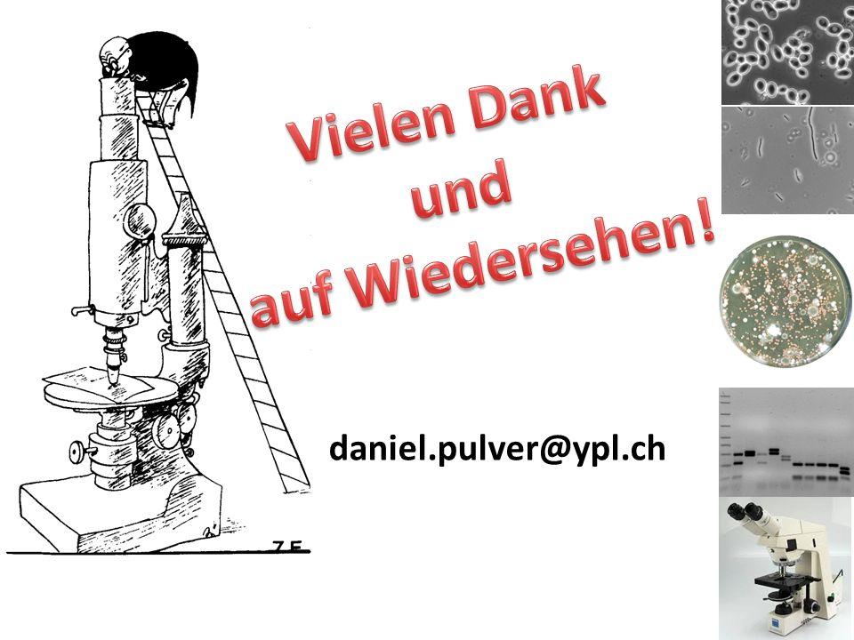 daniel.pulver@ypl.ch