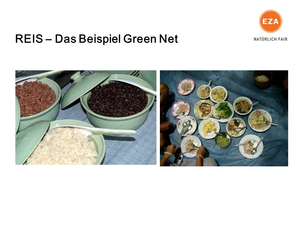 REIS – Das Beispiel Green Net