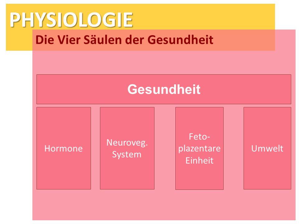 PHYSIOLOGIE Die Vier Säulen der Gesundheit Gesundheit HormoneUmwelt Neuroveg. System Feto- plazentare Einheit