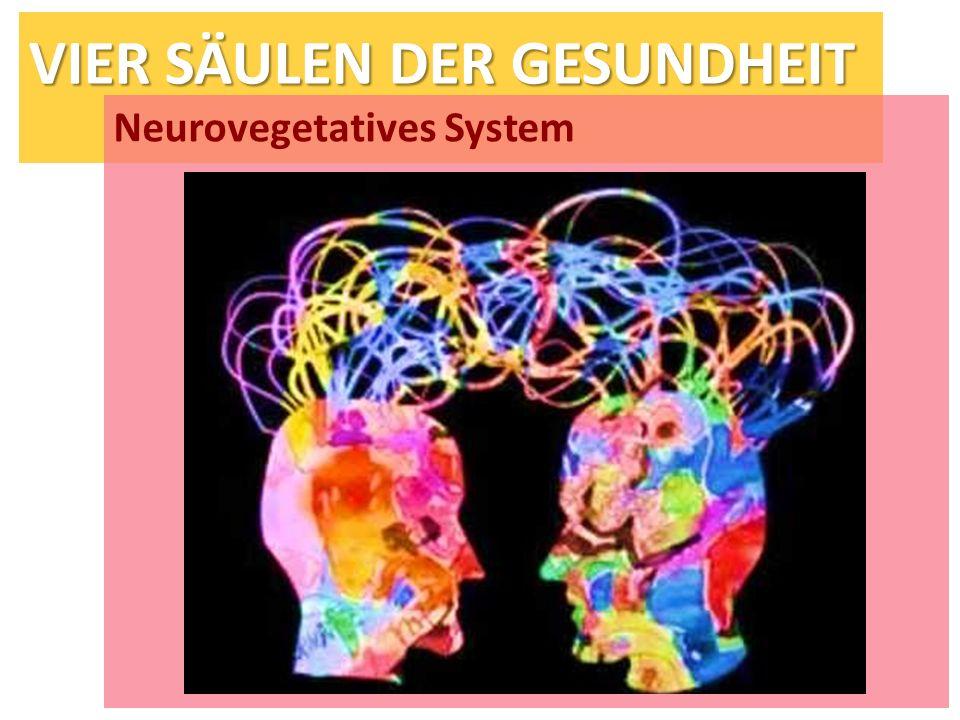 VIER SÄULEN DER GESUNDHEIT Neurovegetatives System
