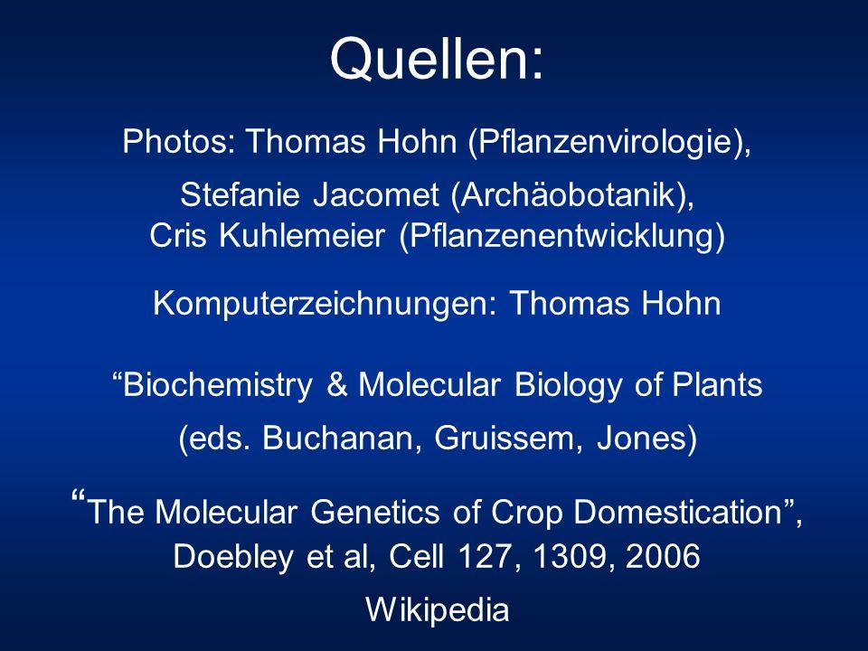 Quellen: Photos: Thomas Hohn (Pflanzenvirologie), Stefanie Jacomet (Archäobotanik), Cris Kuhlemeier (Pflanzenentwicklung) Komputerzeichnungen: Thomas