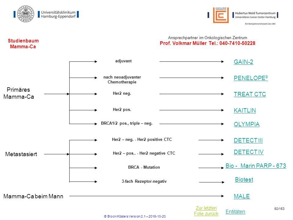 Entitäten Zur letzten Folie zurück Studienbaum Mamma-Ca nach neoadjuvanter Chemotherapie Her2 – neg. - Her2 positive CTC DETECT III Primäres Mamma-Ca