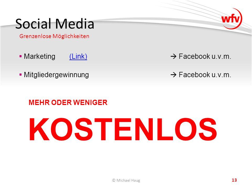 Social Media Grenzenlose Möglichkeiten © Michael Haug 13  Marketing(Link)  Facebook u.v.m.(Link)  Mitgliedergewinnung  Facebook u.v.m.