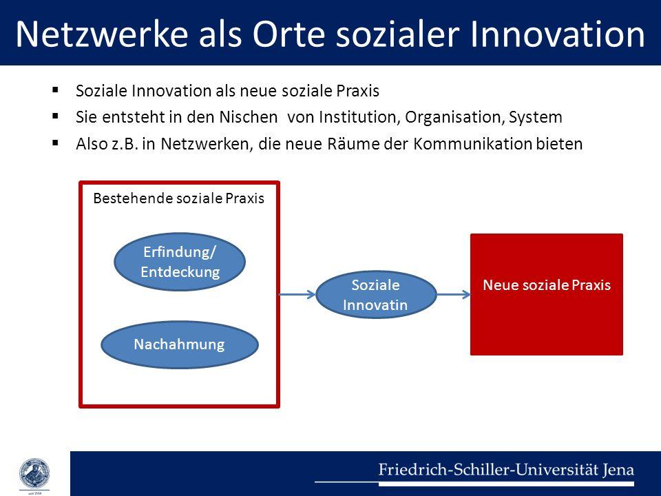 Netzwerke als Orte sozialer Innovation  Soziale Innovation als neue soziale Praxis  Sie entsteht in den Nischen von Institution, Organisation, Syste