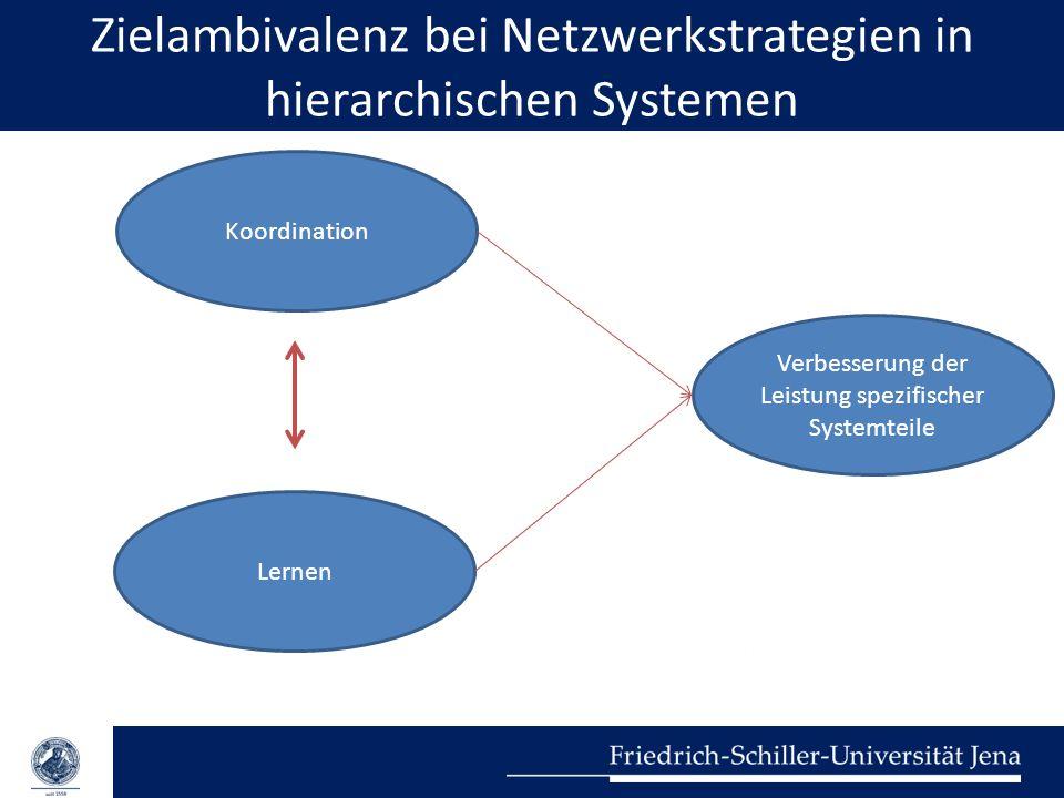Zielambivalenz bei Netzwerkstrategien in hierarchischen Systemen Koordination Lernen Verbesserung der Leistung spezifischer Systemteile