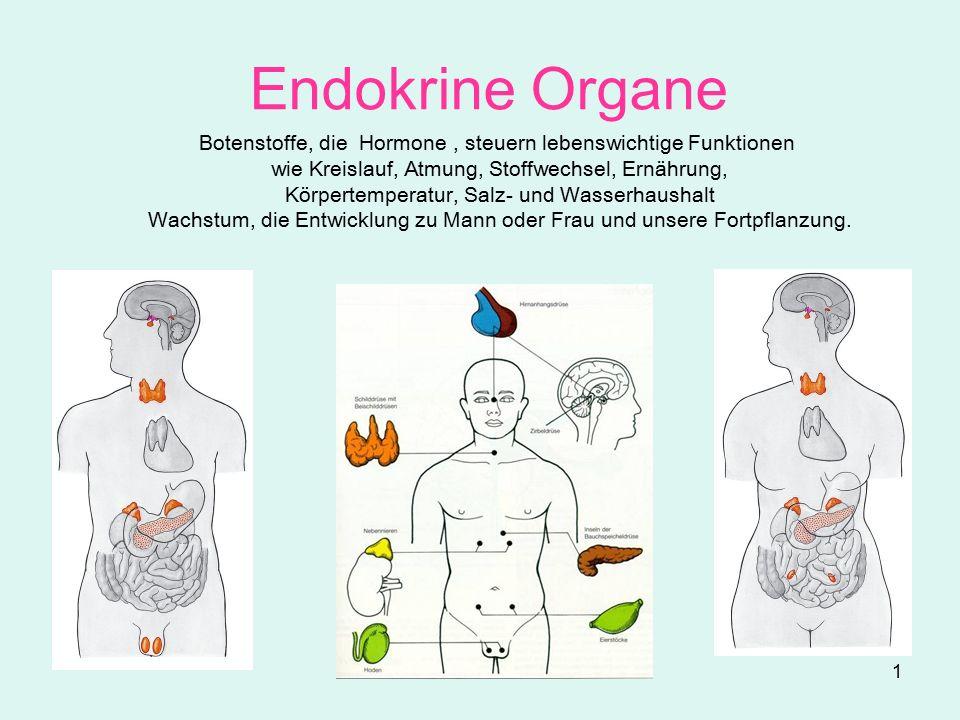 1 Endokrine Organe Botenstoffe, die Hormone, steuern lebenswichtige Funktionen wie Kreislauf, Atmung, Stoffwechsel, Ernährung, Körpertemperatur, Salz- und Wasserhaushalt Wachstum, die Entwicklung zu Mann oder Frau und unsere Fortpflanzung.
