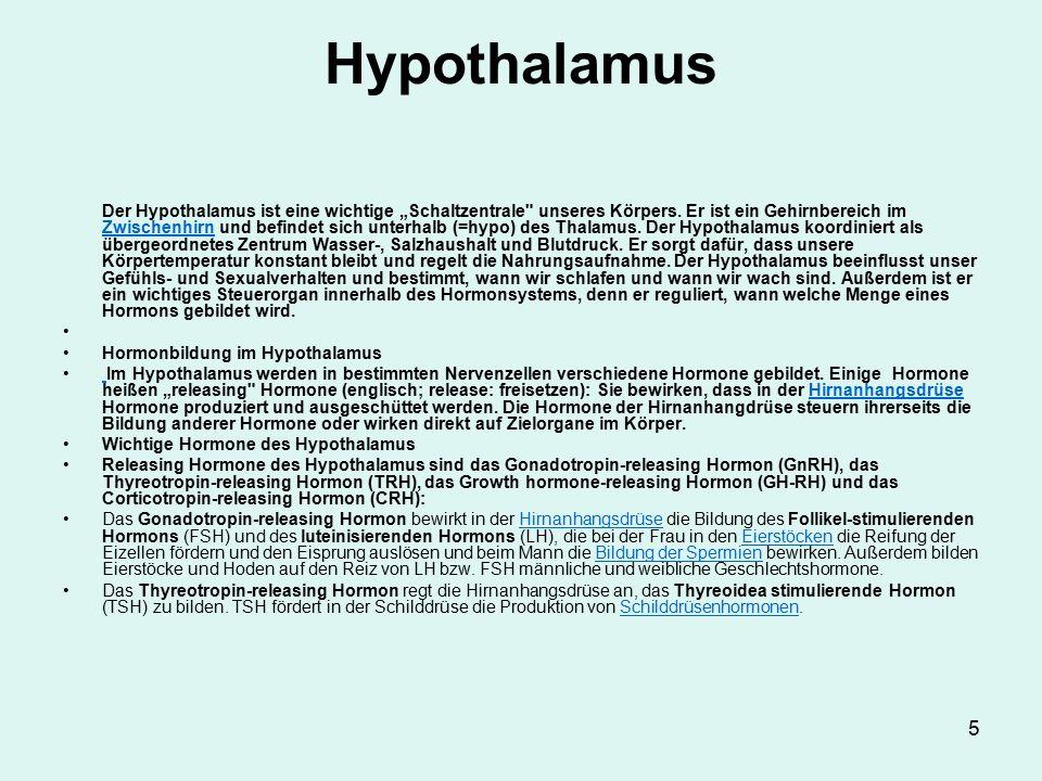 6 Hypothalamus Das Growth hormone-releasing Hormon stößt in der Hirnanhangsdrüse die Bildung des Wachstumshormons (Growth hormone = Somatotropin = STH) an, das einerseits auf die Leber wirkt, andererseits viele Wachstumsvorgänge im Körper anregt.