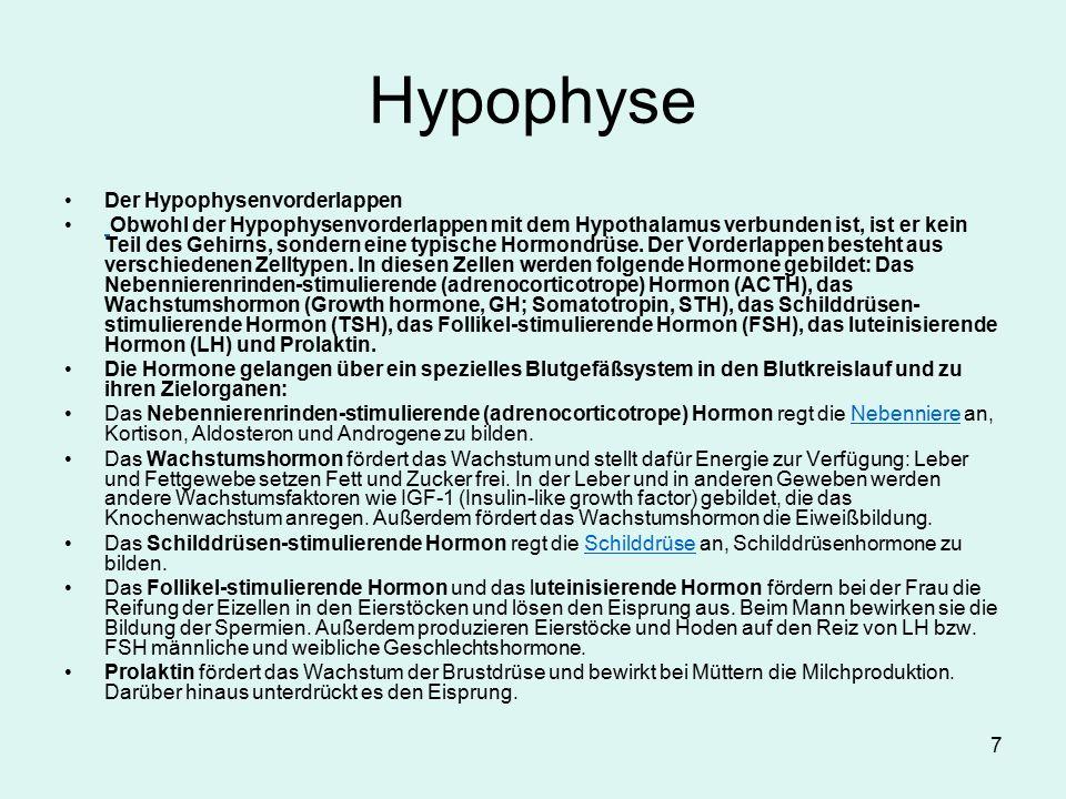 8 Endokrine Drüsen Hypophyse: Wachstumshormon, stimulierende H.für periphere Organe etc Wachstumshormonmangel: hypophysärer Zwergwuchs Wachstumshormonüberschuß: Gigantismus und Akromegalie Hypophysenvorderlappenunterfunktion: Ausfall der peripheren Hormone (Folge:sek.Amenorrhoe,Impotenz,Schilddrüsen-Nebennierenrinden/mark unterfunktion,etc) Hypophysenhinterlappenunterfunktion: Diabetes insipidus(Wasserver= lust bis 20 l pro Tag).