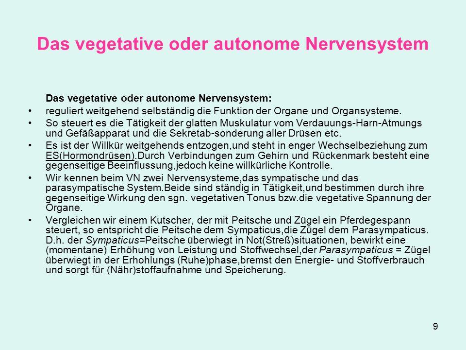 9 Das vegetative oder autonome Nervensystem Das vegetative oder autonome Nervensystem: reguliert weitgehend selbständig die Funktion der Organe und Organsysteme.