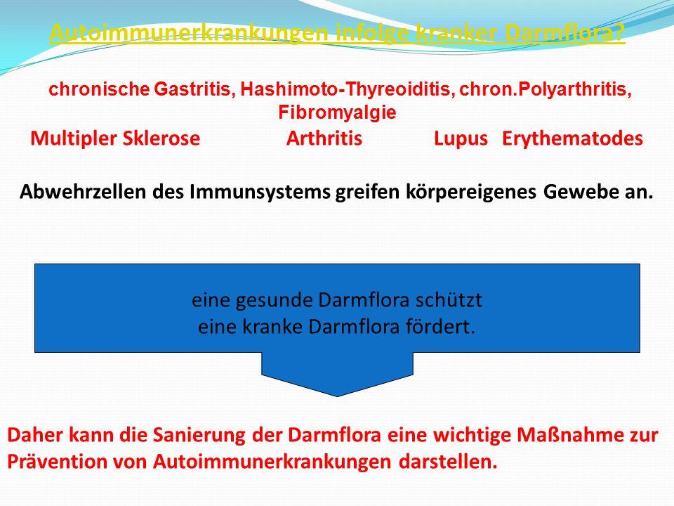Autoimmunerkrankungen infolge kranker Darmflora? chronische Gastritis, Hashimoto-Thyreoiditis, chron.Polyarthritis, Fibromyalgie Multipler Sklerose Ar