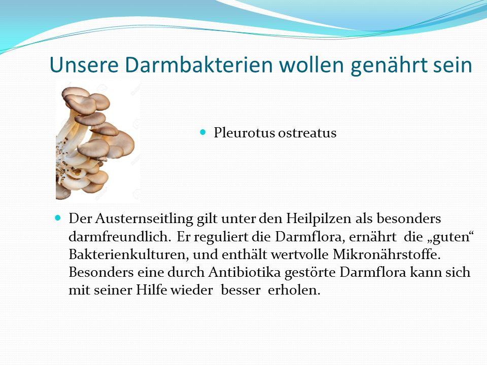 Unsere Darmbakterien wollen genährt sein Pleurotus ostreatus Der Austernseitling gilt unter den Heilpilzen als besonders darmfreundlich. Er reguliert